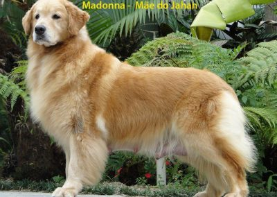 f MADONNA - AVÓ PATERNA DA PALOMA (2)