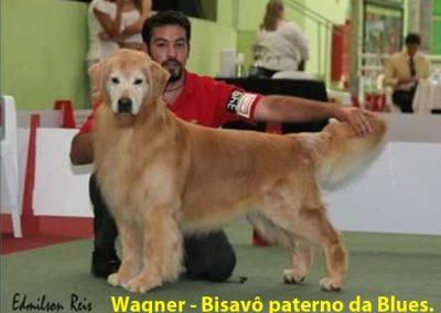 n WAGNER - PENTAVÔ MATERNO DA KIKA